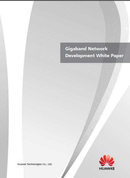 China's 'Huawei Releases Gigaband Network Development White Paper