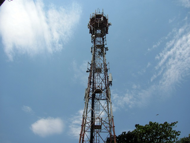 Telecom Egypt Secures 4G License for US$806mn